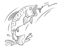 Fishing Trout Fish. Eps 10  illustration Design Royalty Free Stock Photo