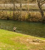 Fishing for Trout on the Smith River - 2 stock photo