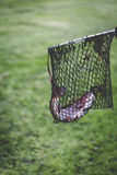 Fishing trouts outdoor activity Stock Photo