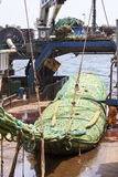 Fishing vessel. Great catch of fish in thrall. Royalty Free Stock Photos