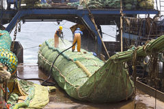 Fishing vessel. Great catch of fish in thrall. Royalty Free Stock Image
