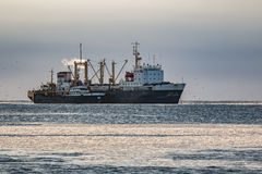 Fishing vessel overloads the catch to fish-processing base in the sea Royalty Free Stock Photo