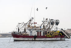 Fishing vessel in Peruvian harbor Royalty Free Stock Photo