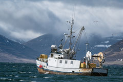 Fishing vessel sails into a storm in the Westfjords in Iceland. Commercial fishing vessel heading into a storm towards the end of Isafjordur fjord, Westfjords Royalty Free Stock Image