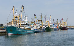 Fishing Vessels. Several fishing vessels in the harbour of Oudeschild, Texel royalty free stock photography