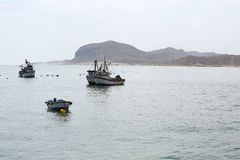 Fishing vessels. Small scale fishing boats parked in the coasts of piura region, peru royalty free stock images