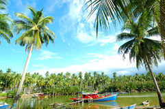 Fishing village. Scenery of a fishing village with many palm trees Royalty Free Stock Photos