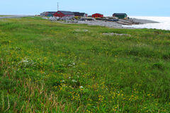Fishing village and dandelion meadow Royalty Free Stock Image