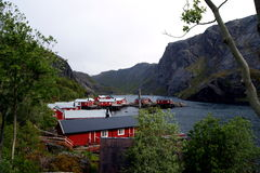 Fishing village in the Lofoten Islands, Norway. View over a small fishing village in the Lofoten Islands, Northern Norway Stock Images