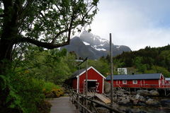 Fishing village in the Lofoten Islands, Norway. View over a small fishing village in the Lofoten Islands, Northern Norway Stock Image
