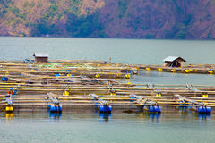 Fishing village near the lake in volcano Batur Royalty Free Stock Photos