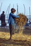 Fishing Village - Ngapali Beach - Myanmar (Burma) Royalty Free Stock Photo