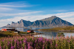 Fishing village in Norway Royalty Free Stock Images