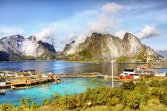 Mountains and Fjord Landscape, Norway  Stock Images
