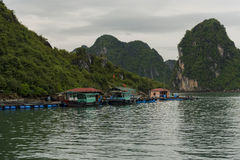 A Fishing Village on the Water. A Fishing Village on Ha Long Bay at the base of a mountain Stock Photography