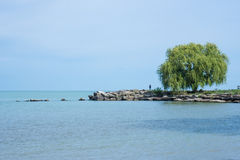 Fishing By The Willow Tree. A solitary fisherman stands on a rocky outcrop of land next to a solo willow tree at Edgewater Park on Lake Erie in Cleveland, Ohio royalty free stock photography