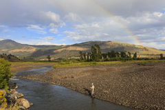 Fishing in Yellowstone National Park Stock Image