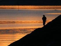 fishman solnedgång 2 arkivbild