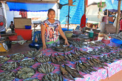Fishmarket, Ταϊλάνδη Στοκ Φωτογραφία