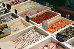 Fishmarket Royalty Free Stock Photography