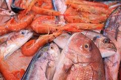 Fishmarket in Catania stock photography