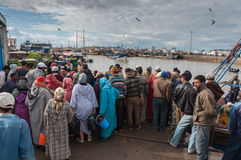 Fishmarket in de haven van Essaouira Royalty-vrije Stock Afbeeldingen