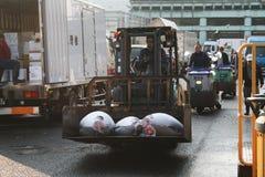 Fishmarket di Tsukiji Fotografia Stock