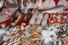 Fishmarket Stock Photos