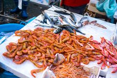 Shrimps and fish on local fishmarket stock photography