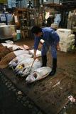 fishmarkettsukiji Arkivfoto