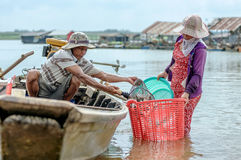 Fishmen pickup fish from boat Stock Images