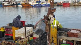 Fishmonger στην εργασία Στοκ Φωτογραφία