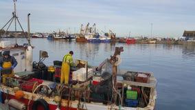 Fishmonger στην εργασία Στοκ φωτογραφία με δικαίωμα ελεύθερης χρήσης