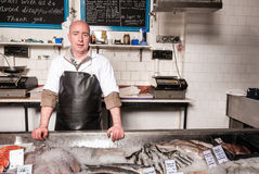 Fishmonger behind his fish counter, UK Stock Photo