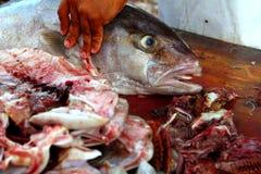 Fishmonger che prepara il filetto di pesce della ricciola Fotografie Stock Libere da Diritti