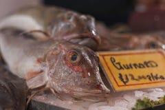 Fishmonger& x27; esposizione di s Fotografie Stock Libere da Diritti