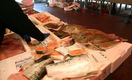 FISHMONGER in fish market in Italy Stock Photography
