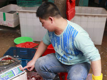 Fishmonger weighing perch. 35 rmb a pound Stock Image
