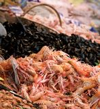 Fishmongers Royalty Free Stock Images