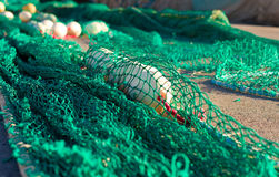 Fishnet Stock Photos