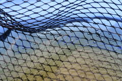 Fishnet. In water royalty free stock images