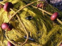 Fishnet y seashell imagen de archivo libre de regalías
