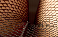 In The Fishnets Royalty Free Stock Images
