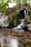Fishpond Royalty Free Stock Image