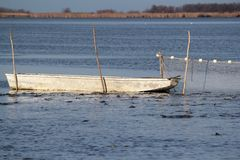 Fishpond with boat Stock Photo