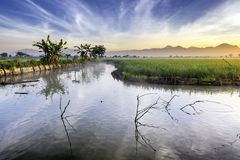 Fishpond followed by very vast, broad, extensive, spacious rice field. Streched into the horizon.  Behind it is a line of hills and mountains that also Stock Photography