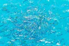 Fishs в океане Стоковые Фото