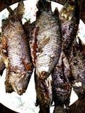 Fishs зажарило стоковая фотография rf
