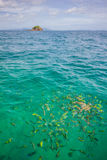 Fishs и остров Стоковая Фотография