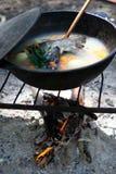 fishsoaup лагерного костера Стоковые Изображения RF
